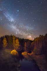 starry night over a small forest river