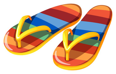 A pair of beach slippers