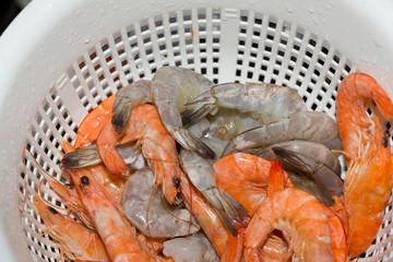 Fresh raw Shrimps