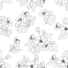 Seamless pattern, apple tree flowers contours