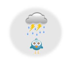 Uccello sotto al diluvio