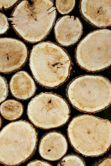 Stacked Logs, Natural Background