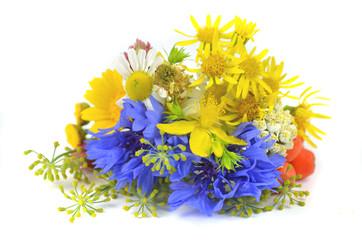 Obraz świeże zioła - fototapety do salonu