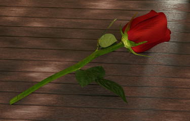 red rose on dark wooden table