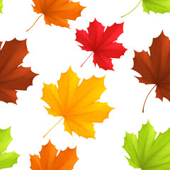 Seamless pattern of color autumn leaves.