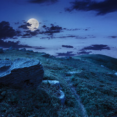 stones on the hillside at night