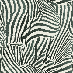 Animal Zebra Seamless Background