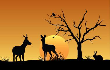 Deer, hare, bird, sunset silhouette