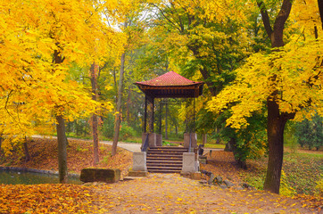Gazebo in the autumn park