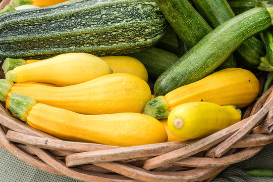 Yellow summer squash on display in baskets