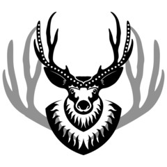 decurated deer head isolated