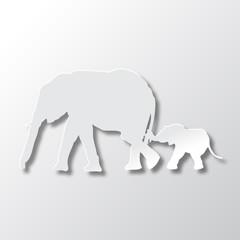 Elephants Mom and Son Care