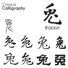 """Rabbit"" character in different kind of Chinese Calligraphy"