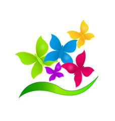 Butterflies vividcolors logo vector