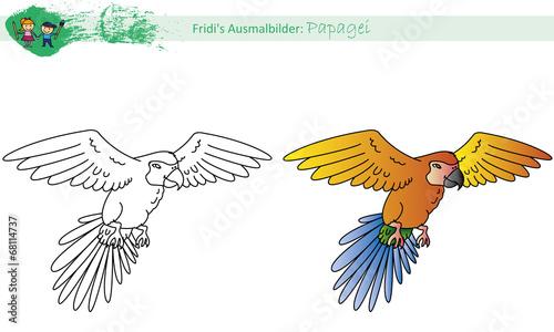 Ausmalbild Papagei Stockfotos Und Lizenzfreie Vektoren Auf Fotolia