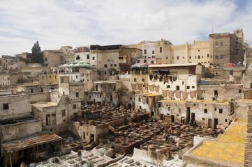 Tanneries de Fès, Maroc