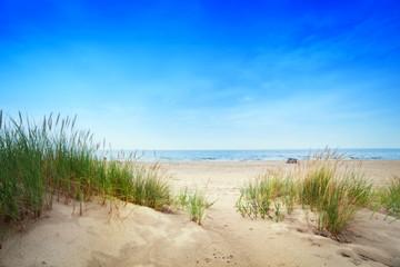 Fototapeta premium Spokojna plaża z wydmami i zieloną trawą. Spokojny ocean