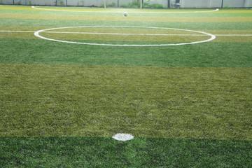 New Green grass soccer field