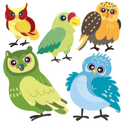 five birds on white background