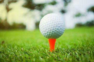 golf ball with orange tee on green grass