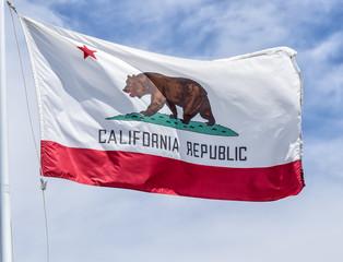 Vintage State Flag of California