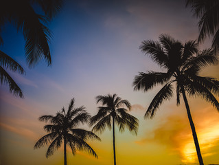 Retro Hawaiian Sunset
