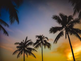 Retro Hawaiian Sunset