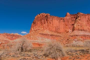 Wall Mural - Capitol Reef Formation Utah