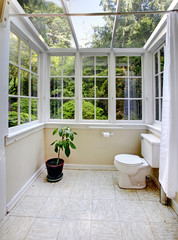 Countryside bathroom with glass wall and ceiling