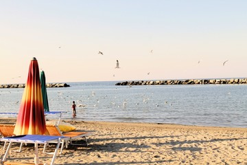 beach with umbrellas and sunbeds in Gatteo in Italy