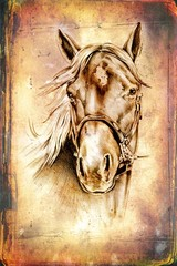 freehand horse head drawing art