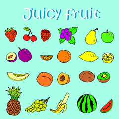 Set of hand drawn juicy fruits and berries