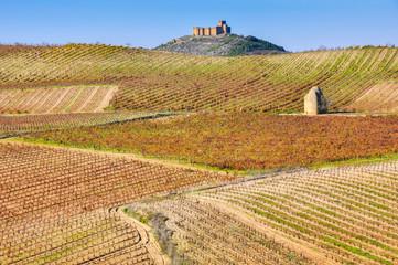 Wall Mural - Viñedo en otoño junto al castillo de Davalillo, La Rioja