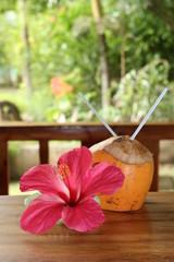 Hibiscus et noix de coco