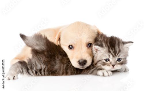 pet supply company