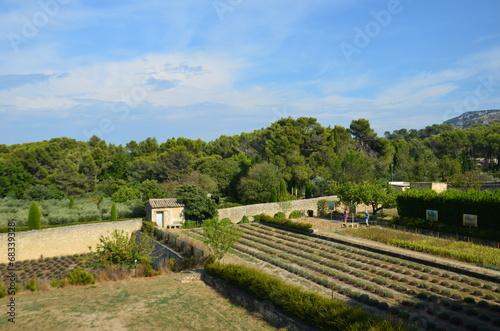 Saint paul de mausole st remy de provence jardins for Entretien jardin st remy de provence