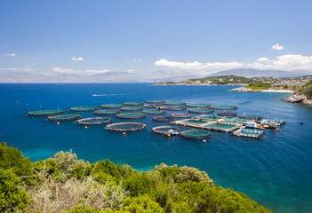 fish farm corfu,greece
