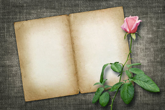 Card for invitation or congratulation with yellow rose