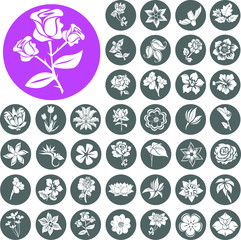 Flower Icons Set. Illustration eps10