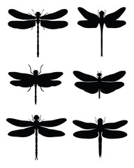 Black silhouettes of dragonflies, vector