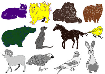 Mixed Hand Drawn Animal Vector Sketch