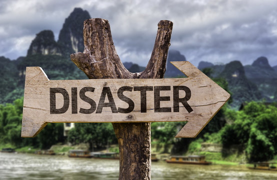 Disaster wooden sign with a forest background