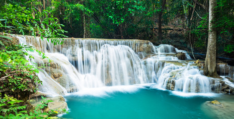 Wall Mural - Waterfall in the jungle