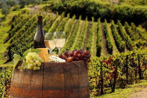 Fototapete White wine with barell in vineyard, Chianti, Tuscany, Italy