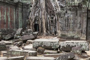 Ruine von Ta Prohm
