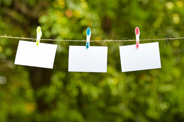 Blank pieces of paper hang on clothesline on green garden  backg