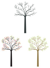 Silhouette tree icons in different season set with bigger bush,