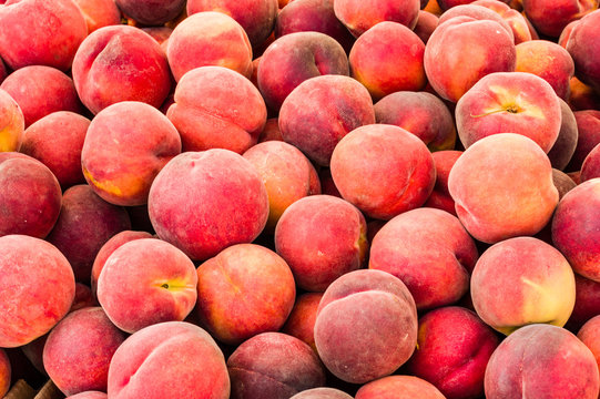 Fresh picked peaches on display