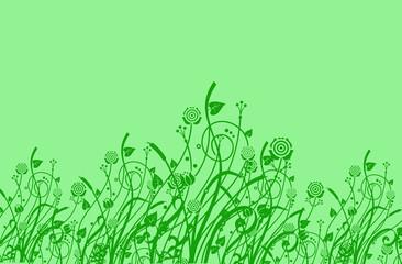 Green lovely plant