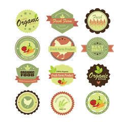 Organic food labels and elements. Illustration eps10